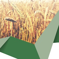 Assicurazione seminativi autunno-primaverili 2017/2018