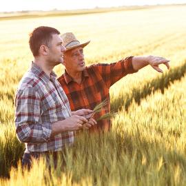 Marzo, un mese di scadenze importanti per gli agricoltori!
