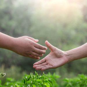 I Fondi mutualistici, cosa sono e a cosa servono