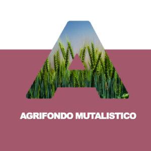 È arrivato il nuovo fondo mutualistico dei seminativi!